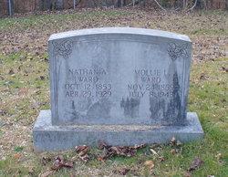 Nathan Ansel Ward