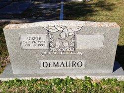 Joseph DeMauro