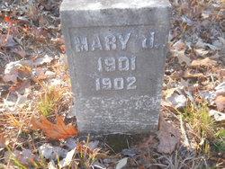 Mary J Vaughan