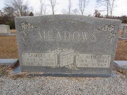 Allie E. <I>Hawthorn</I> Meadows