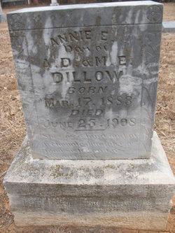 Annie E Dillow