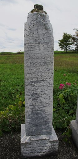 Margaret J Shackleton