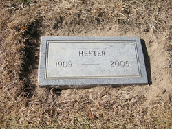 Hester Stepp
