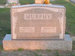 Joanne S Murphy