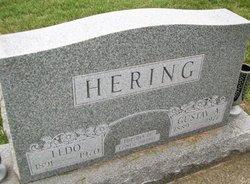 Ledo <I>Frick</I> Hering