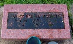 Jasper Harold Mathisen