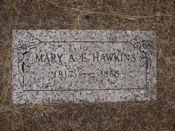 Mary Ann Elizabeth <I>Elliott</I> Hawkins
