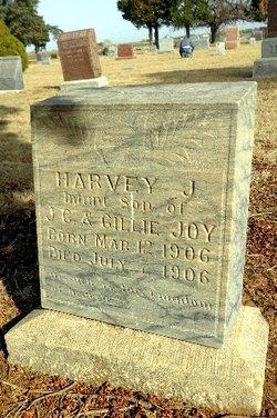 Harvey J Joy