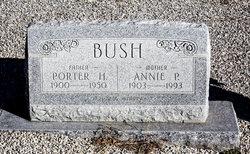 Henry Porter Bush
