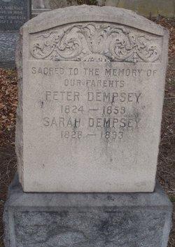 Peter Dempsey