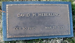 David H Heberling