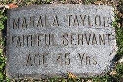 Mahala Taylor