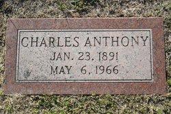 Charles Anthony Rapp