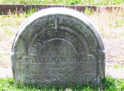 William W Rice
