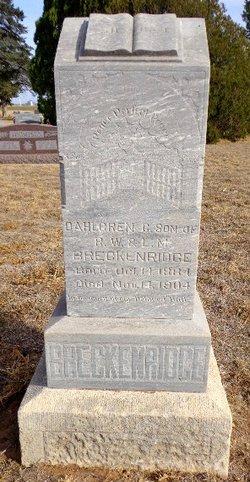 Dahlgren C Breckenridge