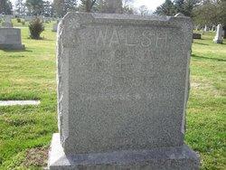 Patrick J Walsh