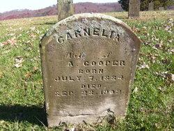 Garnelia Cooper