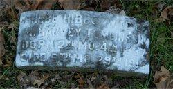 Phebe <I>Hibbs</I> Tomlinson