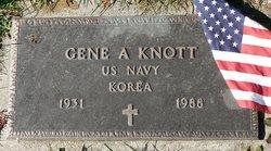 Gene A Knott
