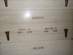 Walter D. Agidius