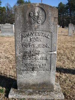 Andrew Jackson Vestal
