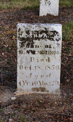 Joshua J Mozingo