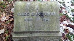 """Alice Josephine """"Allie"""" <I>Zane</I> Grey"""