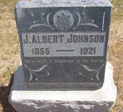 J Albert Johnson