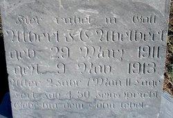 Albert F S Abelbert