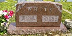 Walter Scott Ebble White