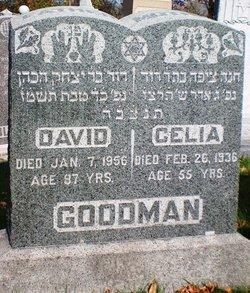 Celia Goodman