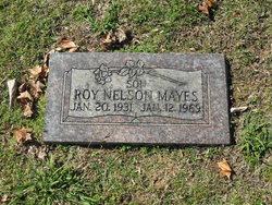 Roy Nelson Mayes