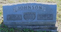 Robert A Johnson