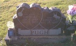 """David R. """"Papa Stinky"""" Pugh"""