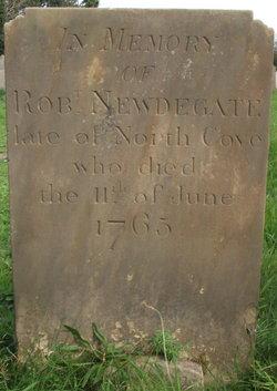 Robert Newdegate