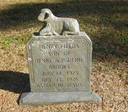 Henry Fields Brooks, Jr