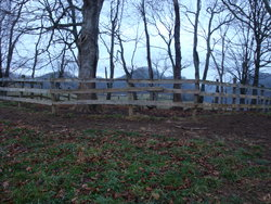 McReynolds Cemetery