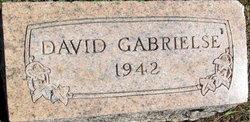 David Lee Gabrielse
