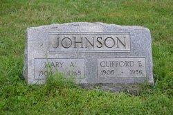 Clifford E Johnson