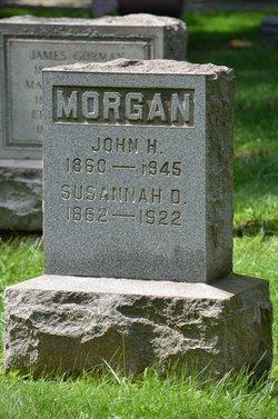 Susannah D Morgan