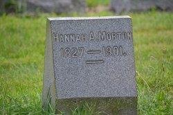 Hannah A Morton