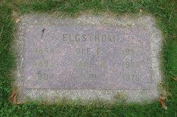 Carl Henry Elgstrom