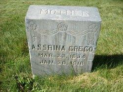 Asserina <I>Anderson</I> Greco