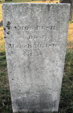 Amos Bush