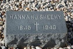 Hannah J Sheehy