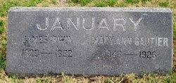 James Irwin January