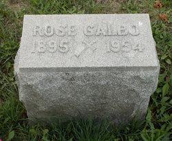 Rose <I>Bellotti</I> Galbo