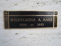 "Wilhelmina Agnes ""Minnie"" <I>Schmidt</I> Harr"