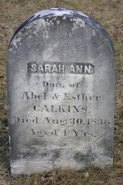 Sarah Ann Calkins