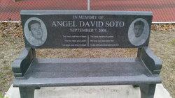 Angel David Soto